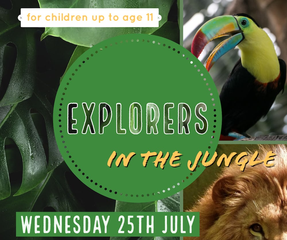 Explorers in the Jungle – Holiday Club