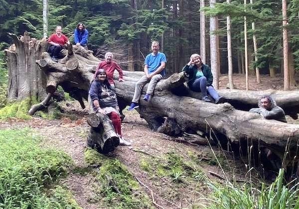 Camping at Forge Wood